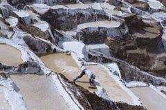 Die Arbeitskraft, die manuell Salz vom Maras-Salz extrahiert, staut stockbild