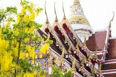 Die Architektur eines Tempels in Thailand mit dem Blühen blüht während der Frühlingszeit Stockfotos