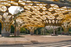 Die artsy gelbe Abdeckung im botanischen Garten Perdana in Kuala Lumpur Malaysia lizenzfreie stockbilder