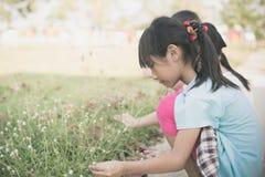 Die asiatischen Kinder, die Gras spielen, blüht im Park Stockbilder