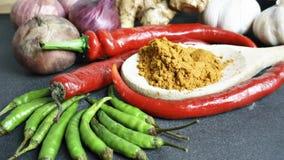 Die Asiatsküchegewürze und -curry Lizenzfreies Stockbild