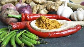 Die Asiatsküchegewürze und -curry Stockfotos