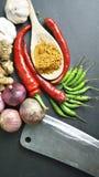 Die Asiatsküchegewürze und -curry Lizenzfreie Stockfotos