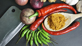 Die Asiatsküchegewürze und -curry Lizenzfreie Stockfotografie
