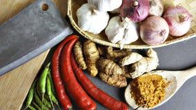 Die Asiatsküchegewürze und -curry Stockbild