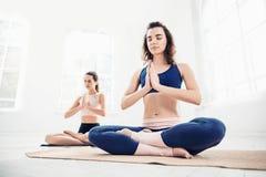 Die Atelieraufnahme, die von den jungen Frauen tun Yoga ist, trainiert auf weißem Hintergrund Stockfotografie
