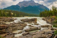 Die Athabasca-Fälle, die Schlucht und der Athabasca-Fluss in Jasper National Park stockfoto