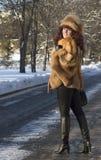 Die attraktive Frau in einem Fuchspelzmantel wird im Winter fotografiert Lizenzfreies Stockfoto