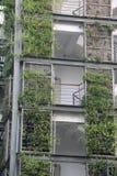 Die Außenwände und die Grünpflanzen Lizenzfreies Stockbild