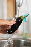 Die Aubergine wird im Wasser gewaschen Stockbild