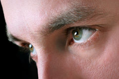 Die Augen des Mannes Stockbilder