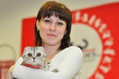 Die Ausstellung von Katzen Stockfoto