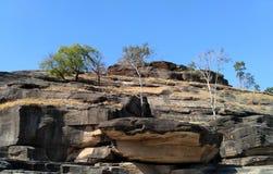 Die Bäume, die auf felsigem Berg bei Udayagiri wachsen, höhlt Vidisha aus Stockfotografie
