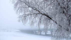 Die Bäume bedeckten mit Frost die Brücke im Nebel im Hintergrund Stockbilder