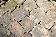 Die Backsteinmauer Lizenzfreies Stockfoto