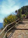 Die Bahn entlang dem Meer Stockfotos