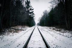 Die Bahnen Lizenzfreie Stockfotografie