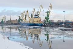 Die baltische Feder des Schiffs wird am Frachthafen, Februar-Morgen entladen Der Kanonenbootskanal, St Petersburg Stockfoto