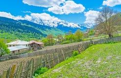 Die Bauernhöfe von Mestia Lizenzfreies Stockfoto