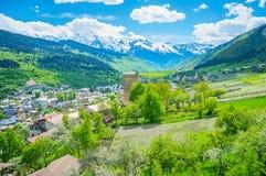 Die Bauernhöfe von Svaneti Stockbilder
