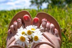 Die Beine der Frau auf dem Gras stockfoto