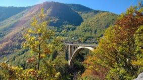 Die berühmte Brücke Tara-Brücke in Montenegro im hellen Herbstwetter Stockfotografie