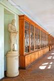 Die berühmte Durchführung der St- Petersburguniversität stockfoto