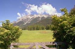Die Berge in Österreich Stockfotografie