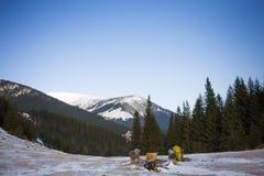 Die Berge und der Wald Lizenzfreie Stockfotografie