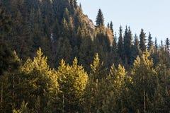 Die Berglandschaften Lizenzfreie Stockfotos