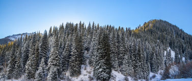 Die Berglandschaften Stockbild