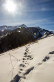 Die Berglandschaften Lizenzfreie Stockbilder
