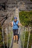 Die berühmte hängende Brücke von Ankarana Stockbild