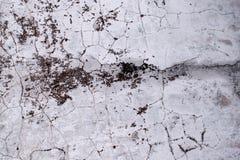 Die Beschaffenheit der alten Betonmauer wird mit Sprüngen und Flecken der Form, schäbiger Hintergrund umfasst Schmutz-Art-Tapete lizenzfreies stockfoto