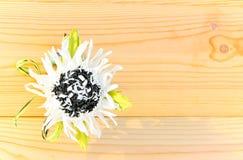 Die Beschaffenheit der hölzernen und weißen und schwarzen Blume Lizenzfreie Stockfotos