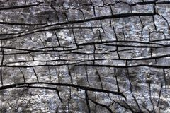 Die Beschaffenheit der Struktur des Materials der Imprägnierung stockbilder