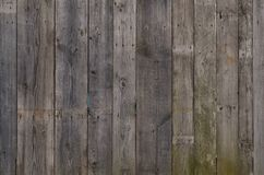 Die Beschaffenheit der verwitterten hölzernen Wand Gealterter hölzerner Plankenzaun des vertikalen flachen Brettes Stockbilder
