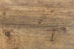 Die Beschaffenheit des alten grauen und gelben Holzes mit Knoten und rostigem gehämmertem Nagel lizenzfreie stockbilder