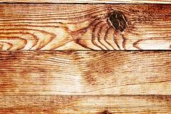 Die Beschaffenheit des Baums ist Nahaufnahme Natürlicher hölzerner Hintergrund Stockfotografie