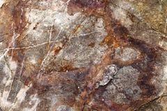Die Beschaffenheit des großen Steins Stockfotografie
