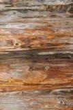 Die Beschaffenheit des Holzes Lizenzfreie Stockfotografie