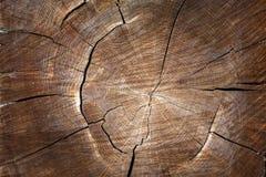 Die Beschaffenheit des Holzes für Hintergrund Lizenzfreies Stockbild