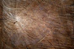 Die Beschaffenheit des Holzes für Hintergrund Stockfoto