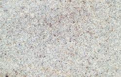 Die Beschaffenheit des Ringelblumensteins, Makrophotographie, Felsen lizenzfreie stockfotos