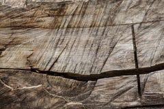 Die Beschaffenheit des Schnittes eines alten Baumstammes Stockfotos
