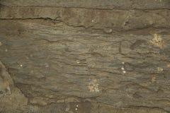 Die Beschaffenheit einer Steinplatte stockbilder