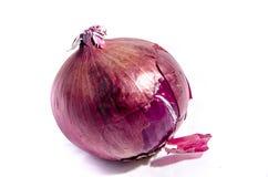 Die beste rote Zwiebel, die Sie betrachtet Lizenzfreies Stockbild