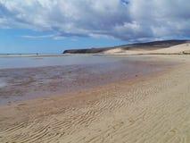 Die beträchtlichen sandigen Strände von Fuerteventura bei Ebbe Stockfotos