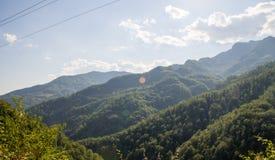 Die bewaldeten Berge bis zum Himmel in Serbien Stockfotos