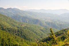 Die bewaldeten Berge bis zum Himmel in West-Serbien Stockbild